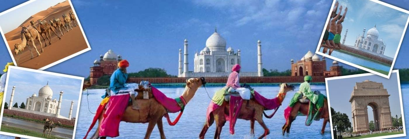Monika-Holiday-Tours-and-Travels-Agent-Pvt-Ltd-in-Chandigarh